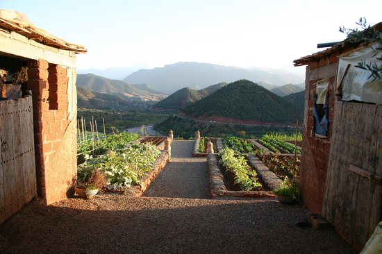 Kasbah Bab Ourika : The Vegetable Garden