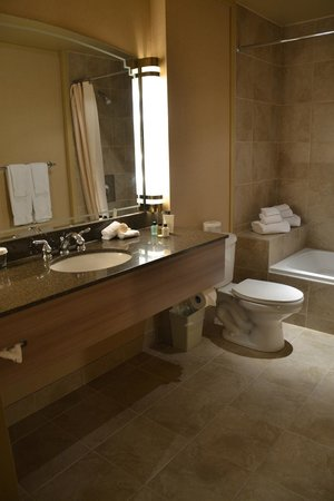 Hotel Royal William: Il bagno