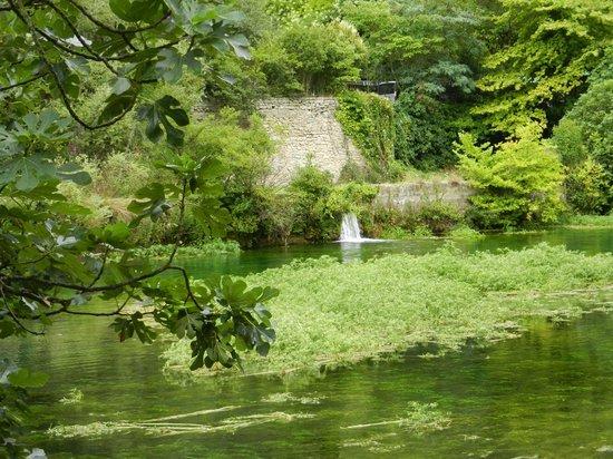 La Fontaine de Vaucluse: végétation luxuriante