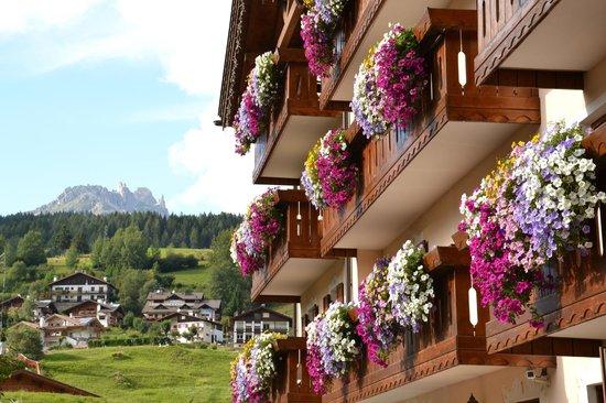 Hotel Stella Alpina: L'hotel