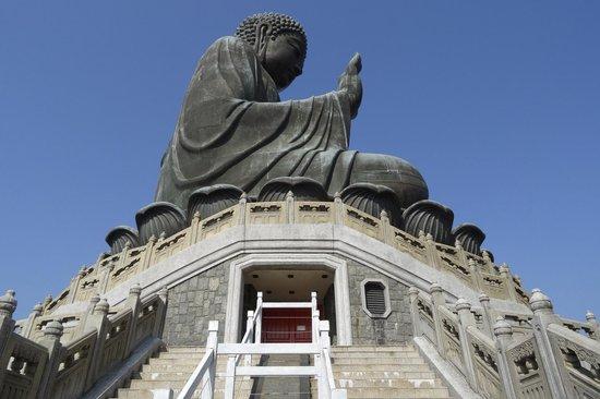 how to go to big buddha hong kong