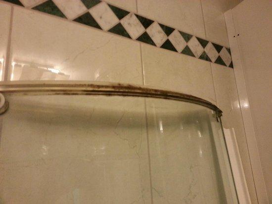 Hotel Jaguar: Duschtür