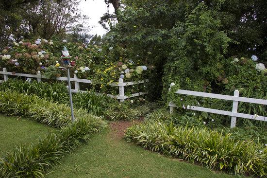 Altura Hotel gardens.