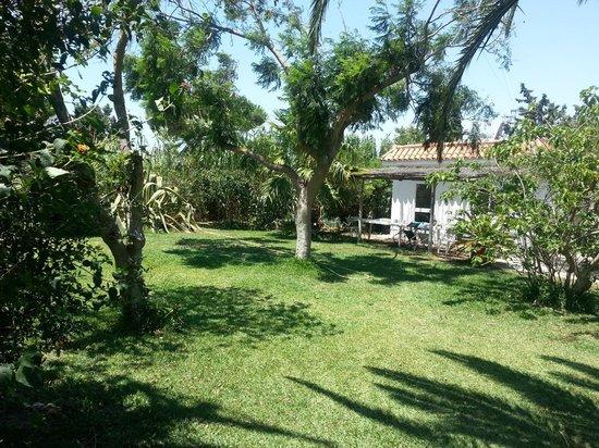 puravida bungalows : HAUPHAUS