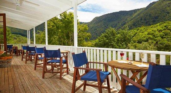The Resurgence: View from verandah