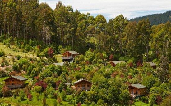 The Resurgence: Bush Chalets & Bush Lodges