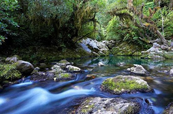 The Resurgence luxury eco lodge: The resurgence, source of the Riwaka River