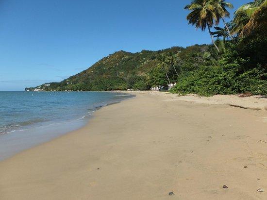 Rincon Beach Resort: Playa muy bonita