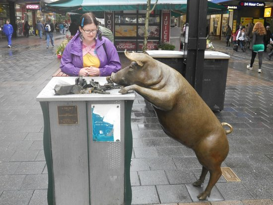 The Rundle Mall Pigs!