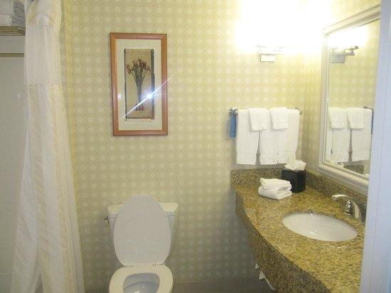 Hilton Garden Inn Myrtle Beach/Coastal Grand Mall: Spotless bathroom