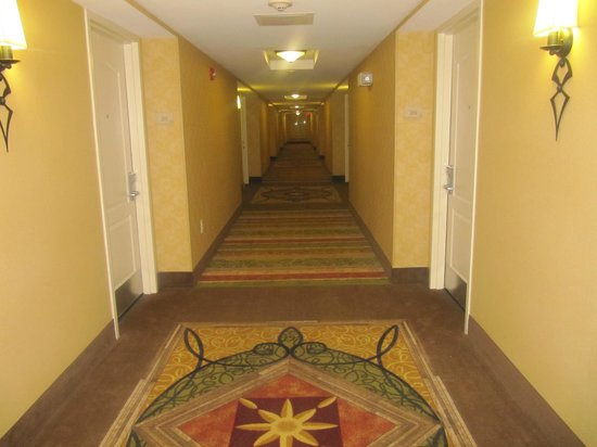 Hilton Garden Inn Myrtle Beach/Coastal Grand Mall: Corridor
