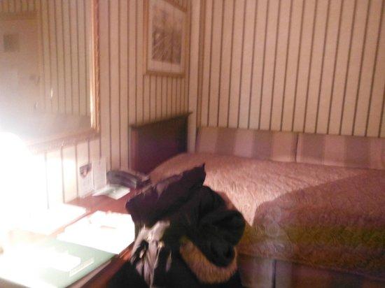 Wolcott Hotel: Third room