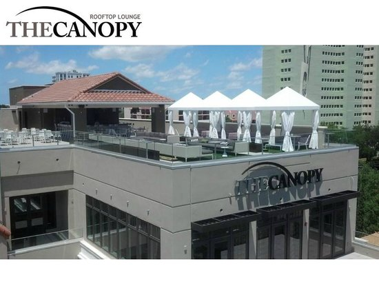 The Canopy Bar Area Picture Of The Birchwood St