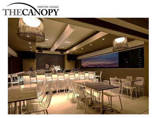 The Birchwood The Canopy Bar area & The Canopy Bar area - Picture of The Birchwood St. Petersburg ...