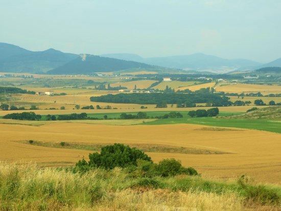 Casa Rural Paskalena I y II: Olza's pastoral view toward Pamplona