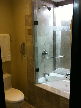 Marquis Reforma Hotel & Spa: Bathroom
