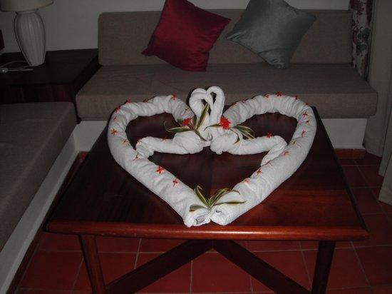 Iberostar Dominicana Hotel: towel art