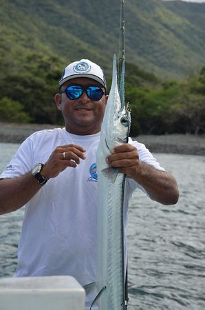 Papagayo Gulf Sport Fishing - North Pacific Tours: Needle fish