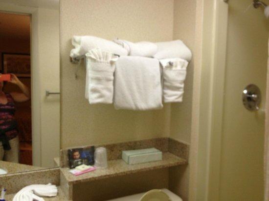 Best Western Intracoastal Inn: bath, very small