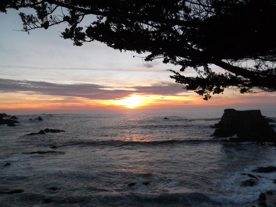 Jughandle State Reserve: Sunset at Jughandle