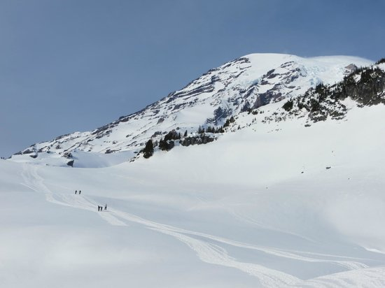 Discover Nature, LLC - Private Tours: Snowshoers enjoying a perfect day