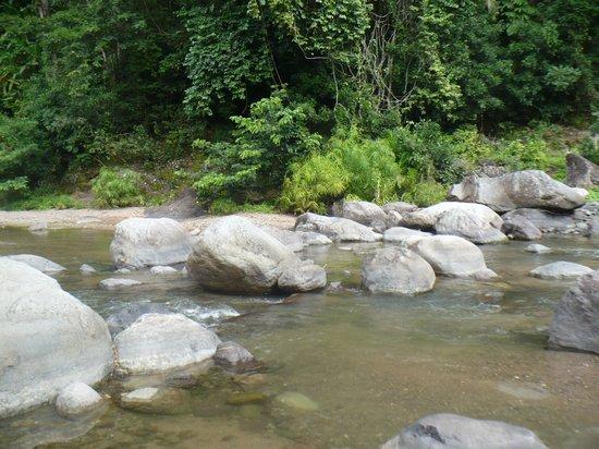 Castleton Gardens: River with Huge Boulders