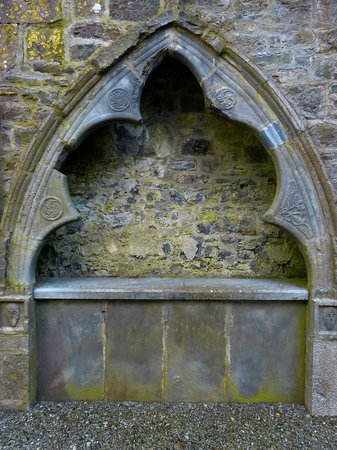 Clontuskert Augustinian Friary: Pretty Detailing