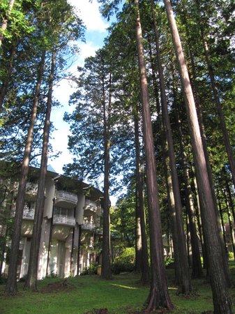 The Prince Hakone Lake Ashinoko: Outside