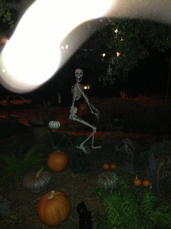 Regina del Palazzo: Ghosts and skeletons at Halloween