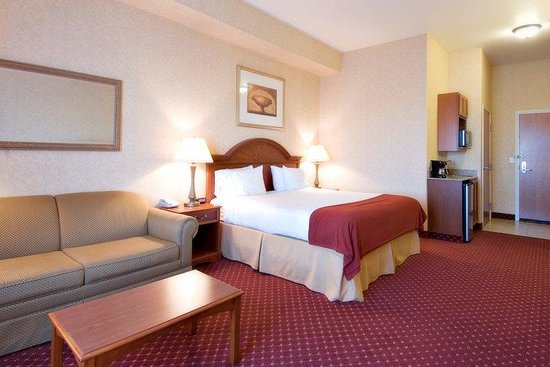 Holiday Inn Express and Suites: Single Bed Guest Room