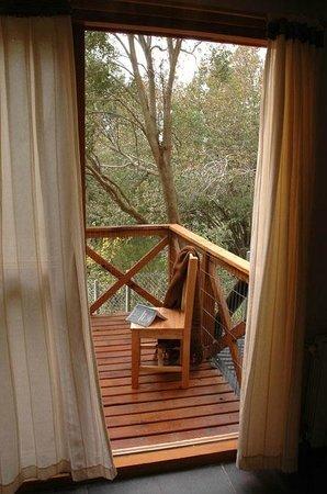Matices Patagonicos: Balcon Bungalow Arrayan