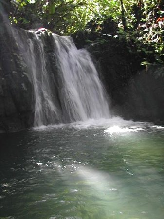 Eco Living Lodge: snd water fall