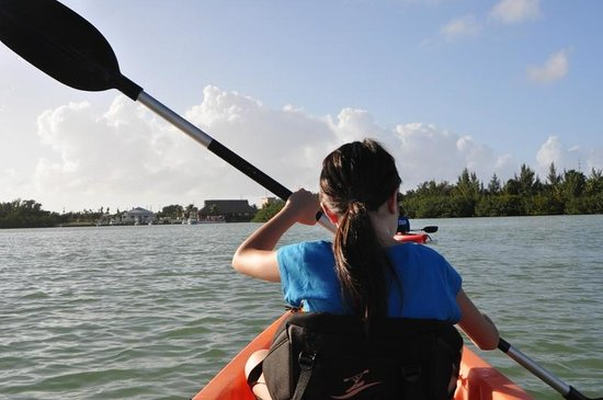 The Holiday Inn Express & Suites Marathon: Kayak rentals to mangroves around the hotel