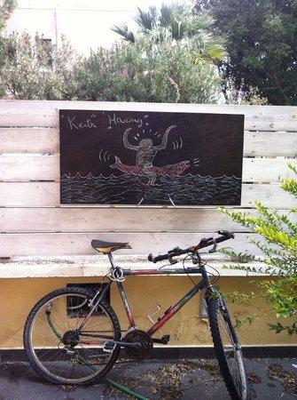 B&B La Sella del Diavolo: Una delle bici di Antonio nel giardino