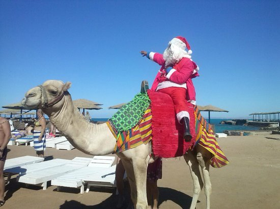 Triton Empire Hotel: Mikołaj wprost na plażę wjechał wielbłądem :)