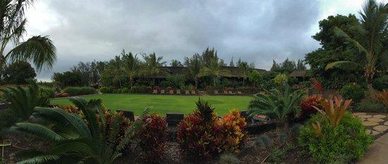Lumeria Maui Retreat : View from my room