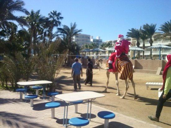Triton Empire Hotel: Mikołaj przyjechał na plażę wielbłądem