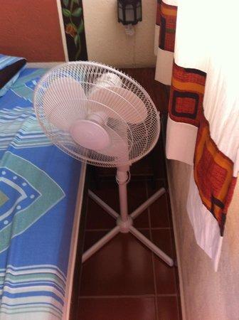Posada Ali: Solicitamos una habitación con aire acondicionado y esto fue lo que nos dieron.noten el espacio