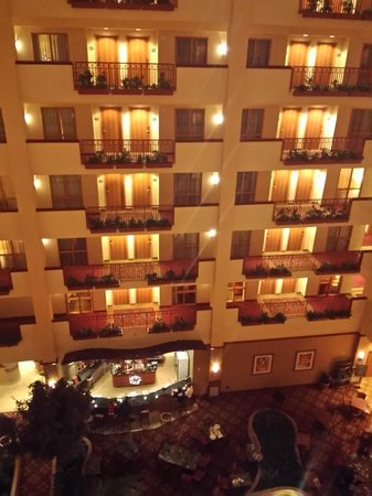 Embassy Suites by Hilton St. Louis St. Charles: View from room