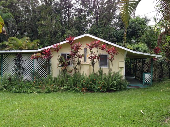 Coconut Cottage Bed & Breakfast: Bungalow full picture
