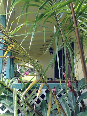 Coconut Cottage Bed & Breakfast: Bungalow private lanai