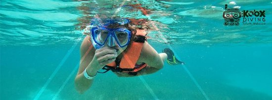 Koox Diving: enjoy your vacation in a great place and dive with us..kooxdiving