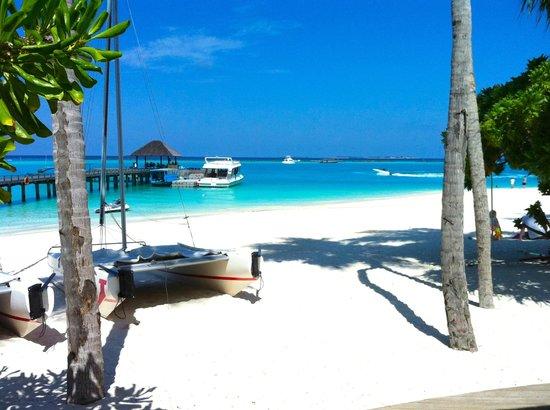 The Sun Siyam Iru Fushi Maldives : Au bar