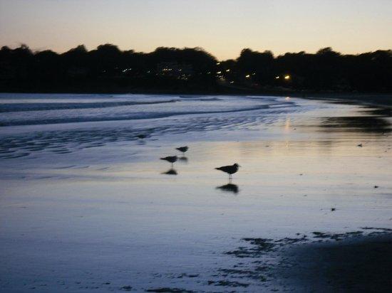 Easton's Beach : At dusk