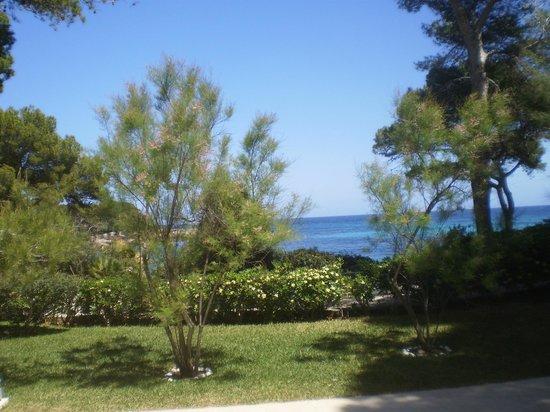 IBEROSTAR Pinos Park: vue de la chambre