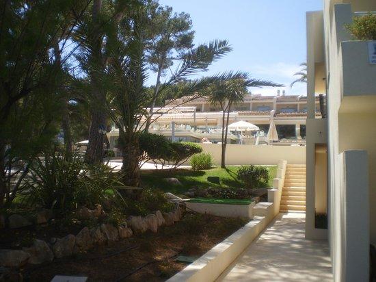 IBEROSTAR Pinos Park: acces piscine