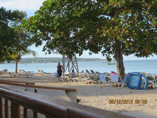 CocoLaPalm Resort : beach