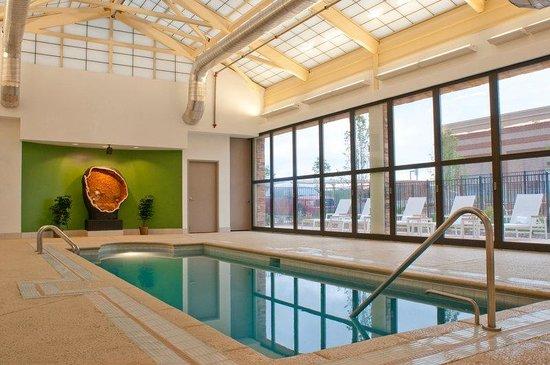 Element Denver Park Meadows: Pool