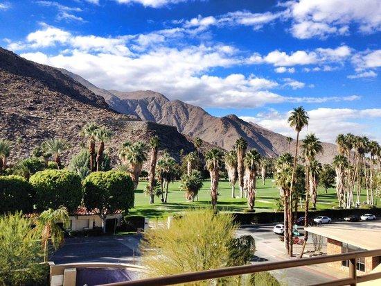 Hyatt Palm Springs: View from my room, below was the pool