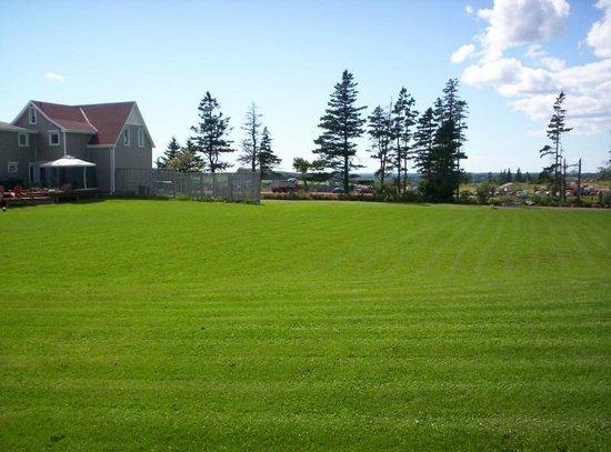 Ada-Ben Weeks House : View from backyard